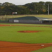 Athletic Field Surfaces